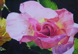 art_67 Water Rose