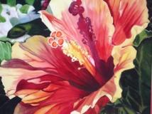 art_45 Hibiscus