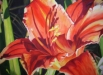 art_70 Day Lilly